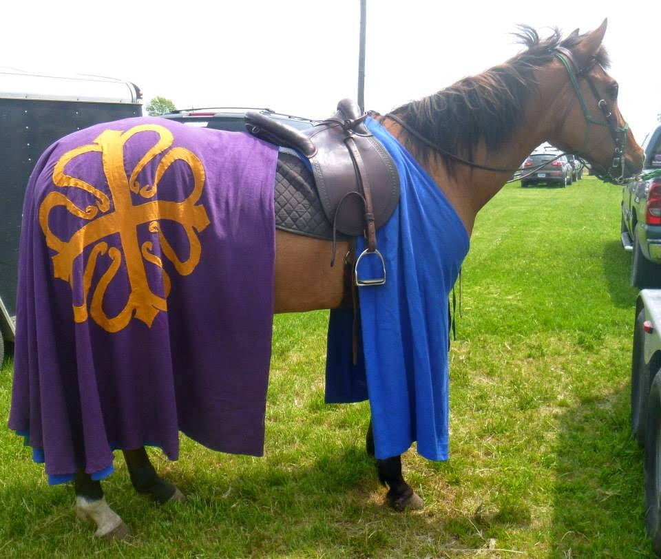 Tiffany, ~14th Century Caparison recreated for equestrian activities in the Society for Creative Anachronism....