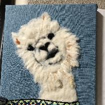 Needle felted alpaca on L19torqouise