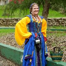 This is my Irish Renaissance faire garb. The yellow leine (shirt) and the blue and green skirts,...