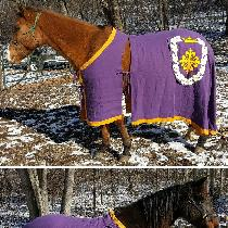 Horse Caparisons with Kingdom Devices for Their Royal Majesties Calontir. The devices are appliq...