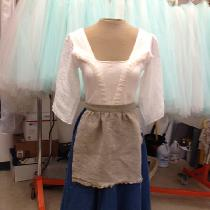 Cinderella's rags dress